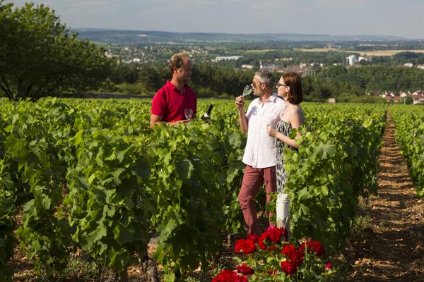 Dégustations de vin, pour les couples d'épicuriens !
