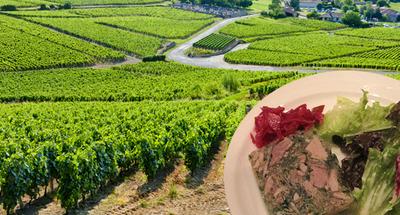 Les 5 Destinations Coups de cœur pour Pâques - Bourgogne