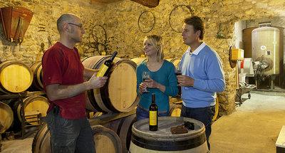 Dégustation de vins à Tannay