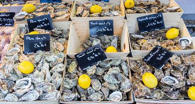 Huîtres de Bretagne fraîchement pêchées