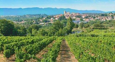 Vignobles près de Béziers