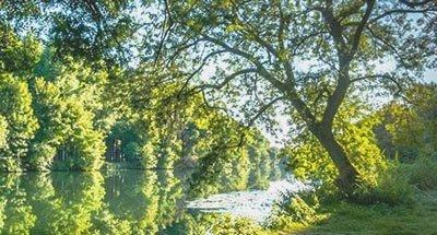 Matinée ensoleillée en Charente