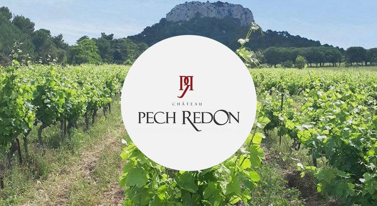 Château Pech Redon